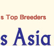 WorldDogs Asia- connecting the World's top breeders of pedigree dog